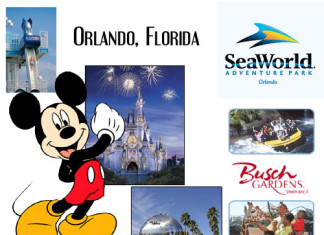 Disney World, Sea World, Universal, Busch Gardens