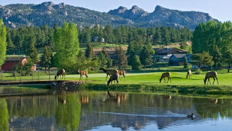 Estes Park Cabins: A Special Retreat